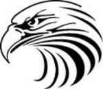 Small thumb eagle control systems